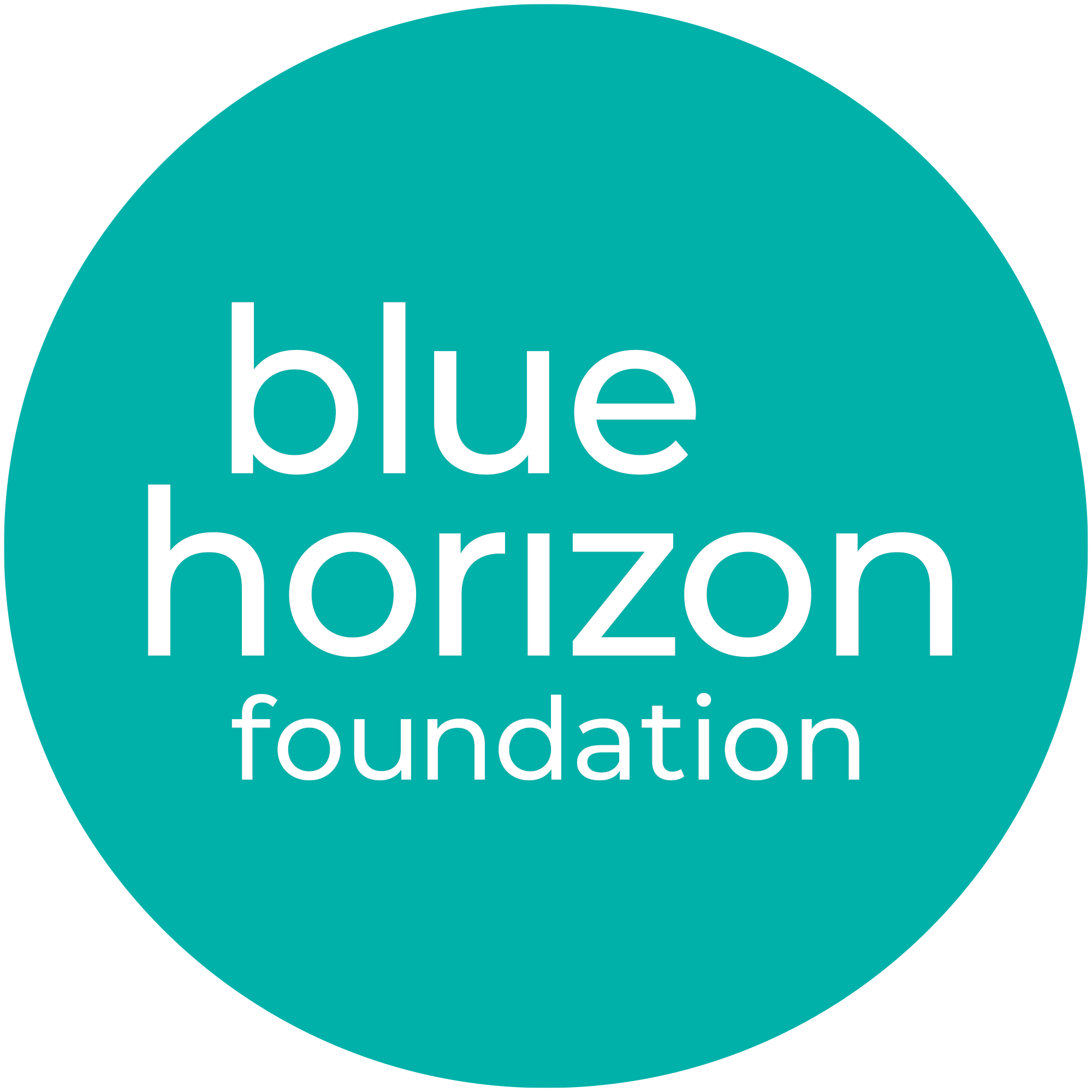 blue-horizon-foundation-logo